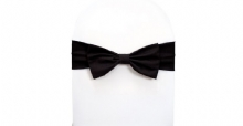 Chair Cover Accessories - Chair Ties